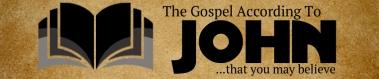 John Banner website_edited-1
